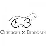 CHIRUCHI_BIDEGAIN